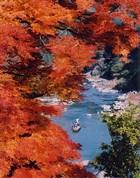 Img_autumn_4