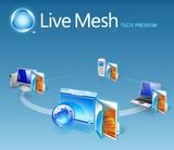 Livemeshlogo2