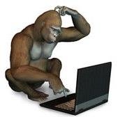 gorilla-jpeg-image-175x201-pixels