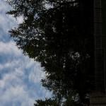 Vertical iOS 6 Panorama