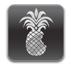 iOS 6 jailbreak release date