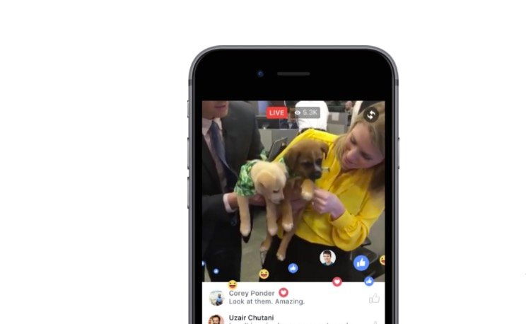 How to stop Facebook live notifications and as close as you can come to turning off Facebook live.