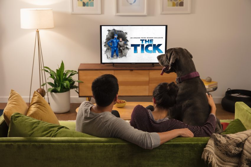 What can the Fire TV 4K do?