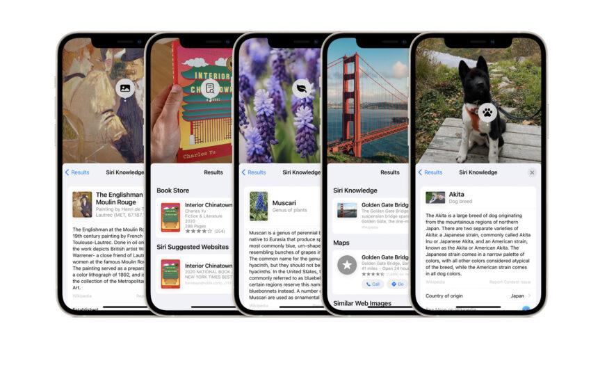 Install iOS 15 Beta to Try Visual Lookup